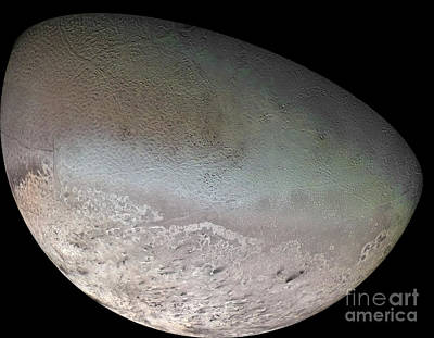 Triton, The Largest Moon Of Planet Poster by Stocktrek Images