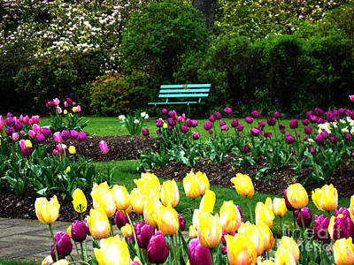 Poster featuring the digital art Tulip Gardens  by Glenna McRae