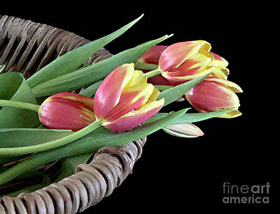 Tulips From The Garden Poster by Sherry Hallemeier