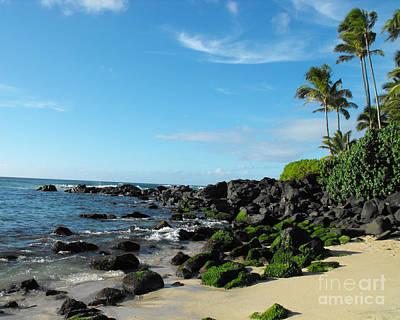Turtle Beach Oahu Hawaii Poster by Rebecca Margraf