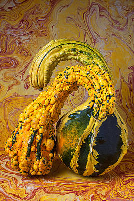 Two Gourds Poster by Garry Gay