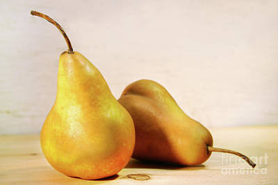 Two Pears Poster by Sandra Cunningham