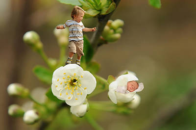 Two Tiny Kids Playing On Flowers Poster by Jaroslaw Grudzinski