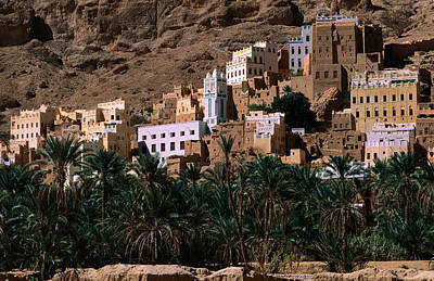Typical Hadramawt Village With Date Plantation In Foreground, Wadi Daw'an, Yemen Poster