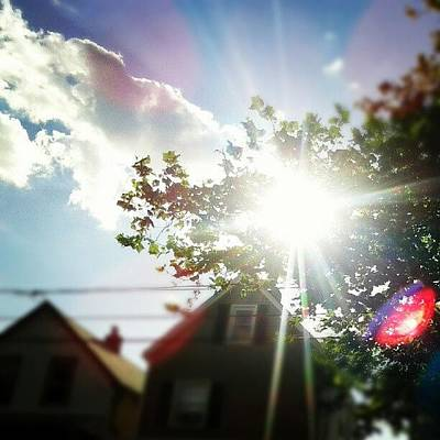 Unexplainable #sun #clouds #tree Poster