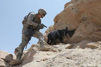 Us Soldier And Blek A Working Dog Clear Poster by Everett