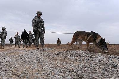 Us Soldier And His Working Dog Search Poster by Everett