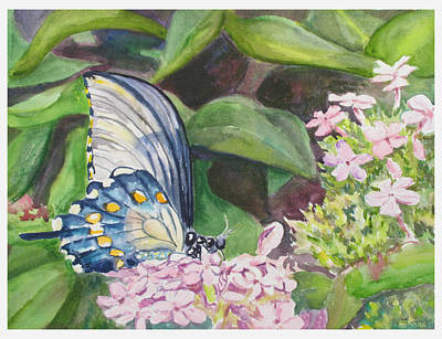 Vacition Butterfly Poster