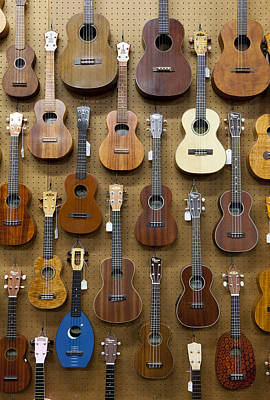 Various Guitars & Ukuleles Hanging From Wall Poster