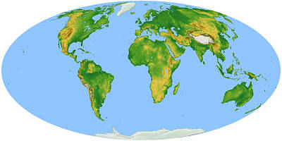 Vegetation Map -- Oval Projection Poster