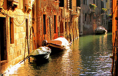 Poster featuring the photograph Venice by Barbara Walsh