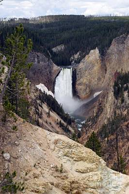 Vertical Lower Falls Of Yellowstone Poster by Living Color Photography Lorraine Lynch
