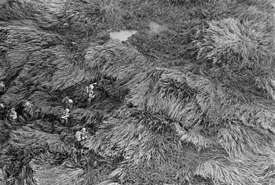 Vietnam War. Aerial View Of Us Marines Poster by Everett