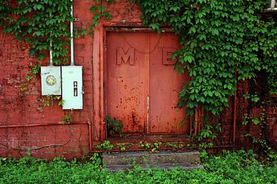 Vines Block The Door Poster by Paul Mashburn
