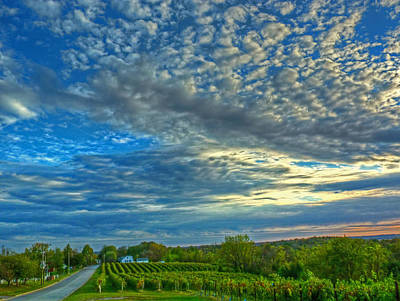 Poster featuring the photograph Vineyard Sunset II by William Fields