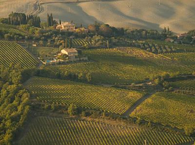 Vineyards Surround Villas Poster