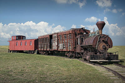 Vintage 1880 Locomotive Train No.1027 Poster by Randall Nyhof