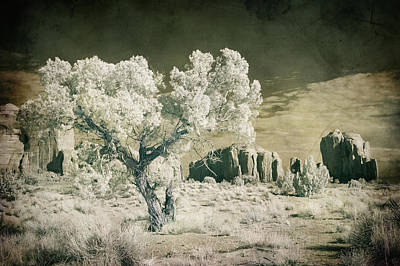 Poster featuring the photograph Vintage Monument Valley Desert by Mike Irwin