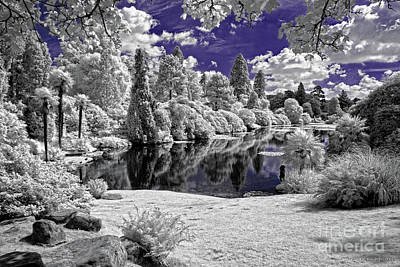 Violet Lake - Infrared Photography Poster by Steven Cragg