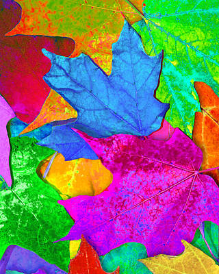 Vivid Leaves 2 Poster by Ginny Gaura