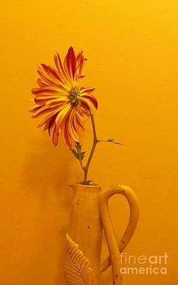 Wall Flower Poster by Marsha Heiken