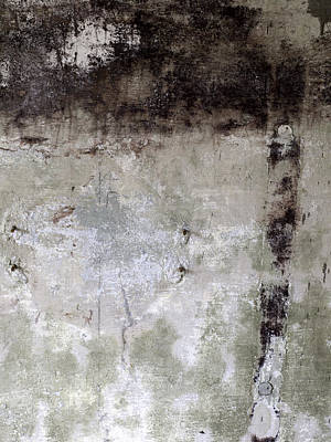 Wall Texture Number 11 Poster by Carol Leigh