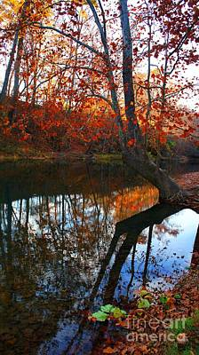 Water In Fall Poster