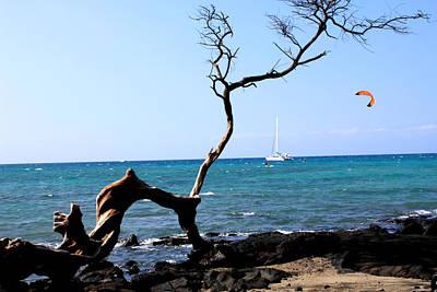 Water Sports In Hawaii Poster by Karen Nicholson