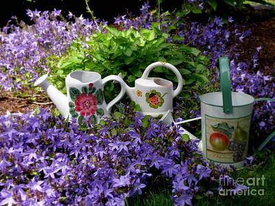 Poster featuring the photograph Watering Cans And Campanula by Tanya  Searcy
