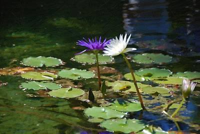 Waterlilies 1 Poster