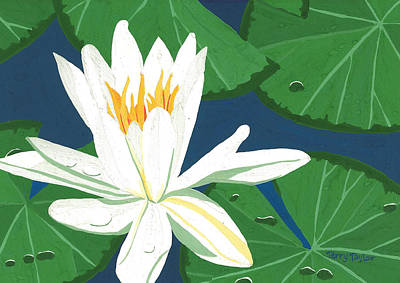 Poster featuring the painting Waterlily by Terry Taylor