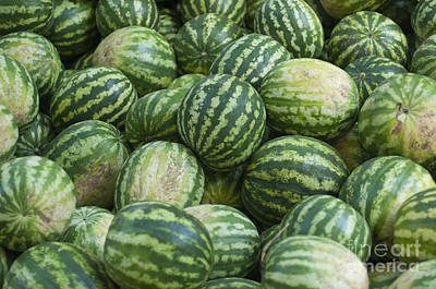 Poster featuring the photograph Watermelons by Andrew  Michael
