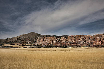 Poster featuring the photograph Wheatfield Zion National Park by Hugh Smith