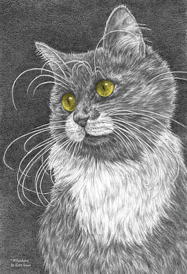 Whiskers - Color Tinted Art Print Poster