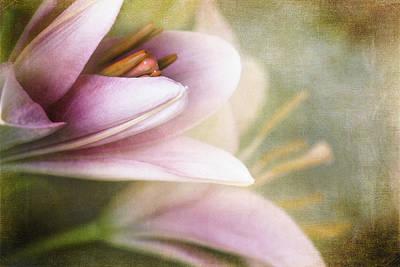 Whisper Of Spring Poster