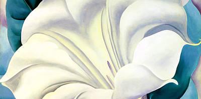 White Flower 10 Poster by Sumit Mehndiratta