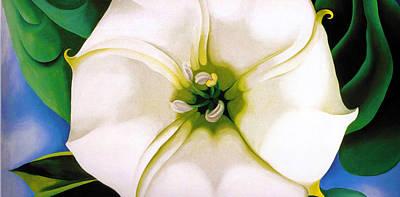 White Flower 9 Poster by Sumit Mehndiratta