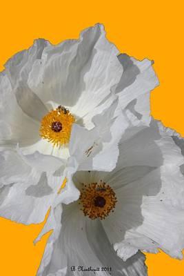 White Poppies On Yellow Poster