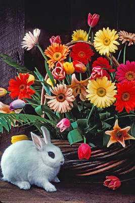 White Rabbit By Basket Of Flowers Poster