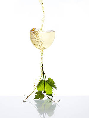 White Wine Poster by Floriana Barbu