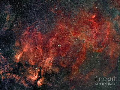 Widefield View Of He Crescent Nebula Poster by Rolf Geissinger