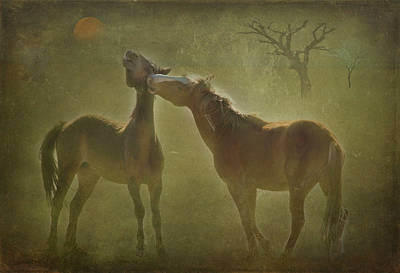 Wild Horses At Play Poster by Carolyn Dalessandro