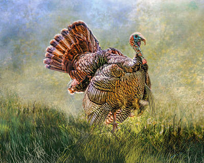 Poster featuring the digital art Wild Turkey by Mary Almond