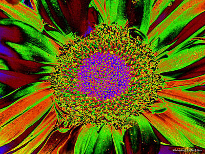 Wildflower Tutu Poster