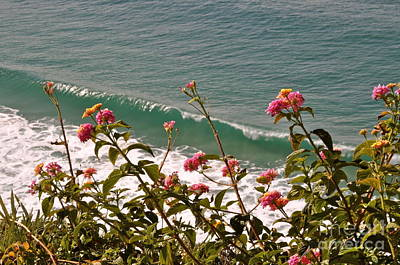 Poster featuring the photograph Wildflowers And Waves by Johanne Peale