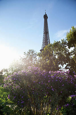 Wildflowers In Front Of The Eiffel Tower Poster by Paul Hudson