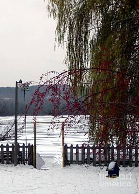 Willows And Berries In Winter Poster by Desiree Paquette