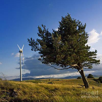 Wind Poster by Bernard Jaubert
