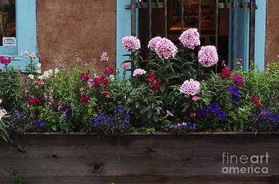 Poster featuring the photograph Window-box Flowers  by Sherry Davis