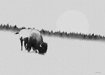 Winter Graze Poster by Ron Jones